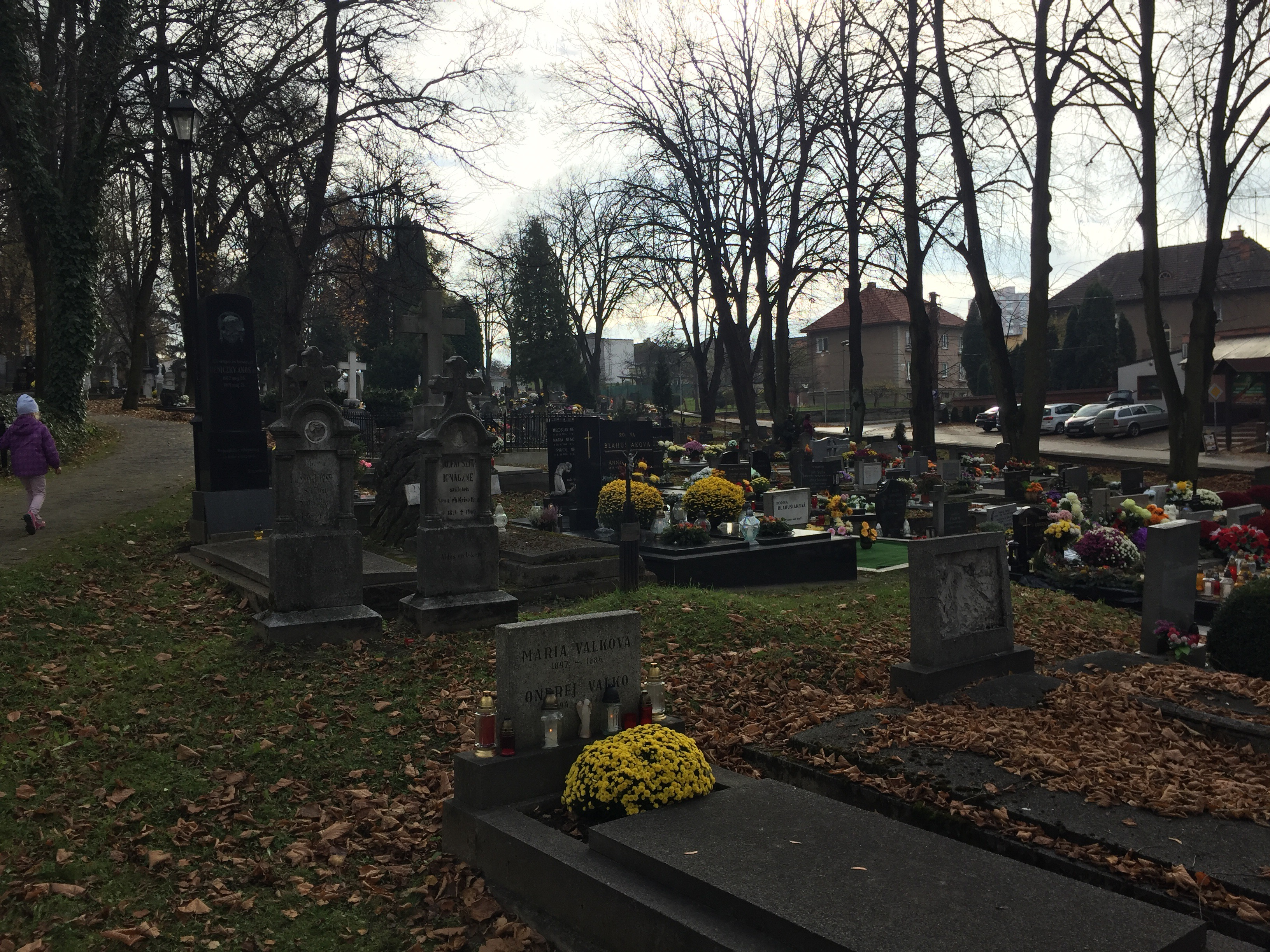 All Saints Day From Zumbro To Vah